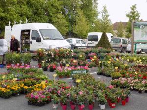 Marché aux fleurs @ Mareuil sur Aÿ | Mareuil | Nouvelle-Aquitaine | France
